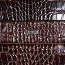Портфель Desisan 1335-19