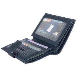 Бумажник Canpellini 1102-241