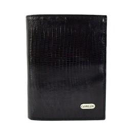Бумажник Canpellini 505-8