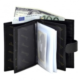 Бумажник Desisan 072-011