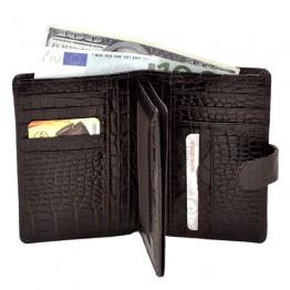 Бумажник Desisan 081-19
