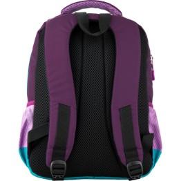 Рюкзак школьный GoPack GO20-113M-4