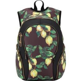 Рюкзак школьный Kite K17-953L-2